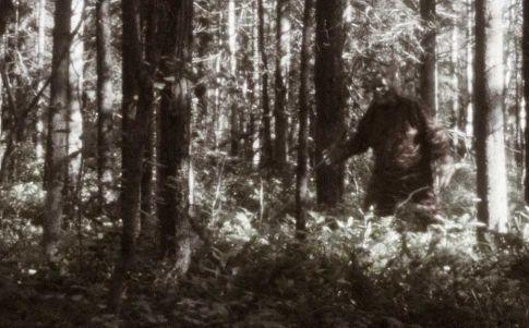 América del Norte: Continuas apariciones del Bigfoot
