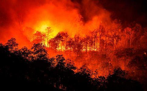 El Amazonas crea sin parar gases de efecto invernadero