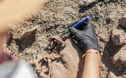 La cueva que cobijó a neandertales, denisovanos y humanos... ¿al mismo tiempo?