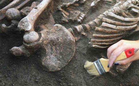Arqueólogos consiguen extraer ADN de un grupo humano desconocido