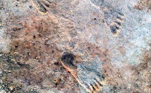 La humanidad llegó a América 10 mil años antes de lo que se creía (Créditos: Universidad de Cornell)