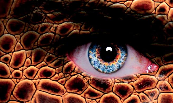 Dragones, el linaje secreto