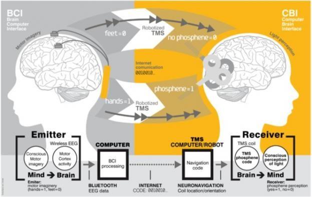 Interfaz cerebro a cerebro (BTBI) para la transferencia de información entre sujetos humanos. Créditos: Grau et al. (2014)